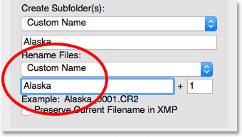 وارد کردن نام سفارشی جدید برای فایل ها