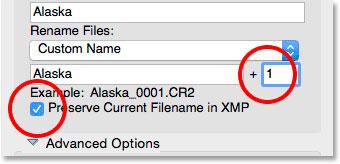 جعبه فرمت چهار رقمی و حفظ نام فایل فعلی را در گزینه XMP