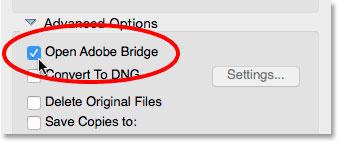 گزینه Open Adobe Bridge در بخش تنظیمات پیشرفته Photo Downloader