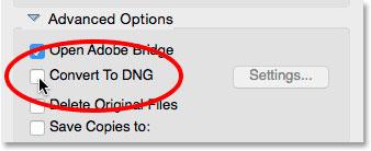 تبدیل به فرمت DNG درPhoto Downloader