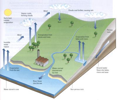 چرخه آب در سوال آیلتس